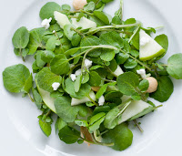 Image result for watercress plant